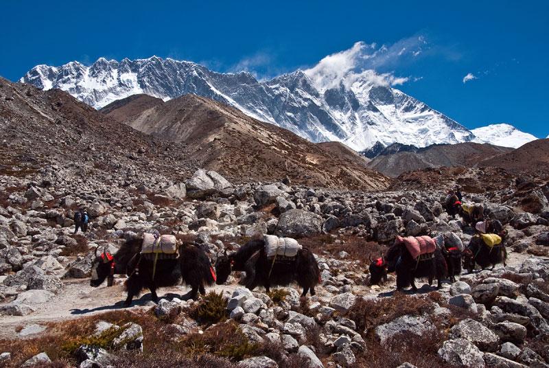 Everest-base-camp trek