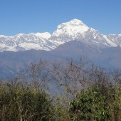 annapurna sanctuary trek14